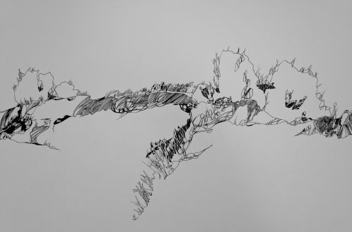 """Horizon Lines Pen and ink on paper 22"""" x 210"""" 2014"""