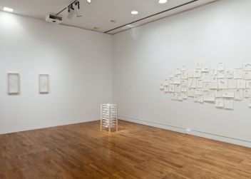 MFA show installation
