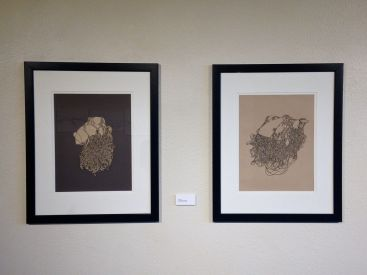 """Skein I & II, Pen and ink on paper 18"""" x 22.5"""" 2014"""
